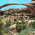 Bob and Nancy Kendrick - Landscape Arch