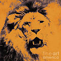 Angela Doelling AD DESIGN Photo and PhotoArt - Lion Pop Art