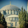 Joan Carroll - Mosque Magnificent