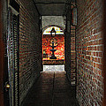 Joan  Minchak - New Orleans Alley