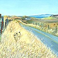 Asha Carolyn Young - Point Reyes Country Road