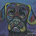 Ania M Milo - Puggle in Abstract