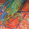 Kelly     ZumBerge - Red Eye Iguana