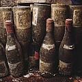 Red Wine Bottles, Covered With Mold by James L. Stanfield