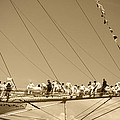 Kym Backland - Sailors On The Bowsprit