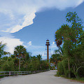 Timothy Lowry - Sanibel Lighthouse Road