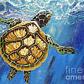 Lisa Kramer - Sea Turtle Takes a Breath