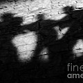 Christine Till - Shadows on the Wall of...