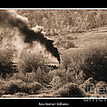 Rose Santuci-Sofranko - Steam Engine Locomotive...