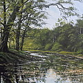 James Guentner - Summer Creek Reflections