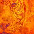 Mayhem Mediums - Sunburst tiger on fire