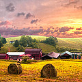 Debra and Dave Vanderlaan - Sunrise Pastures
