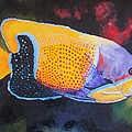 Terry Gill - Sutton Fish