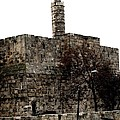 Annemeet Van der Leij - Tower of David in...