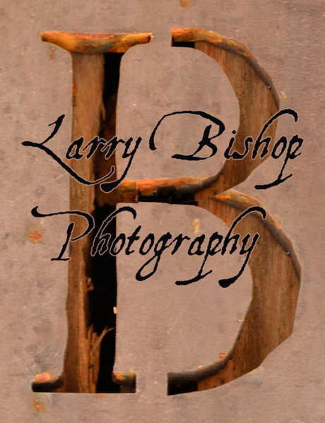 Larry Bishop - Fine Artist
