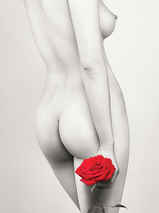 Nude Photograph - Beautiful Naked Woman With A Rose by Oleksiy Maksymenko