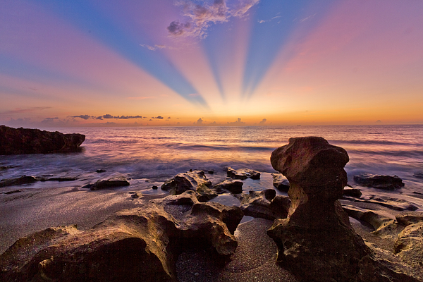 Blowing Rocks Photograph - Coral Cove by Debra and Dave Vanderlaan