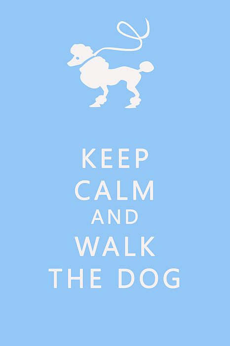 Keep Calm Photograph - Keep Calm And Walk The Dog by Georgia Fowler