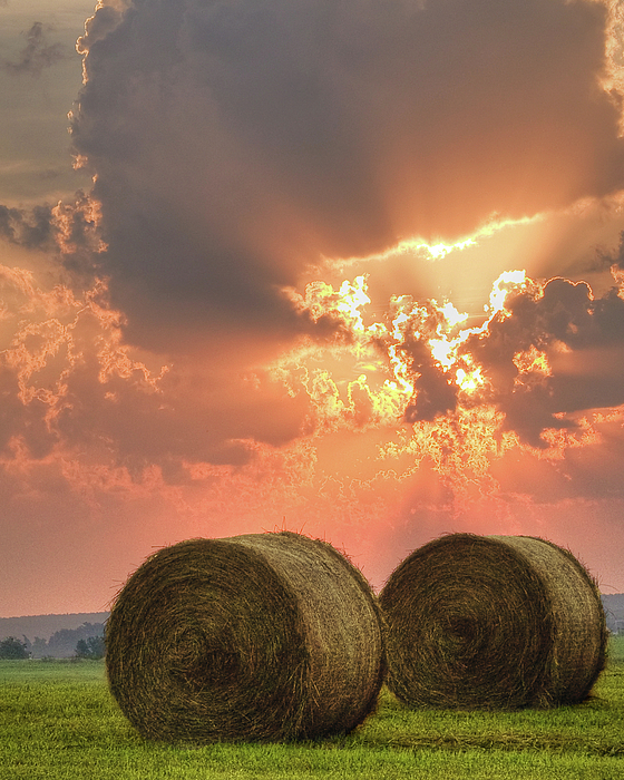 Landscape Photograph - Morning In The Heartland by Ron  McGinnis