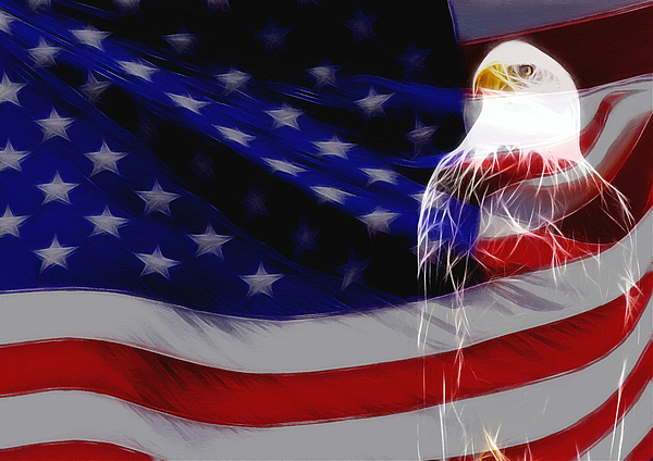 American Flag Eagle Sea Stars Strips National Usa Us Proud Glory Painting Painting - The Eagle by Stefan Kuhn
