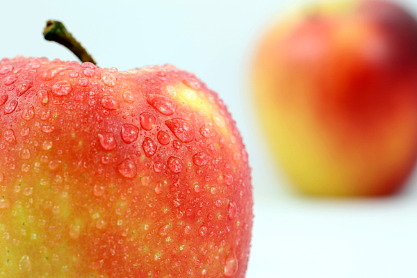 Two Red Gala Apples Photograph