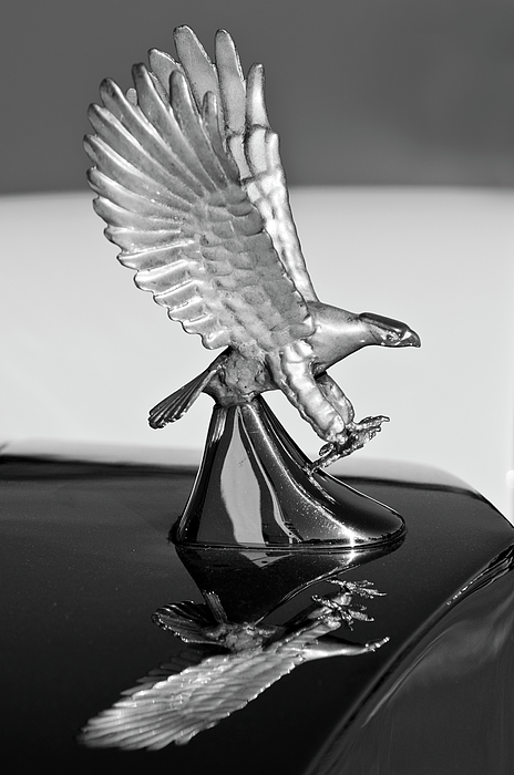 1986 Zimmer Golden Spirit Hood Ornament 3 Photograph