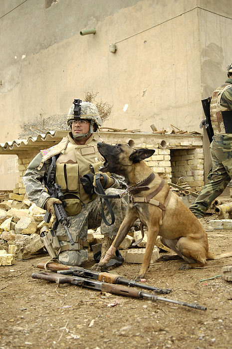 Friendship Photograph - A Dog Handler And His Military Working by Stocktrek Images