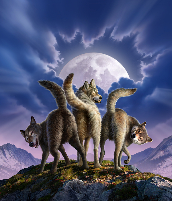 3 Wolves Mooning Digital Art