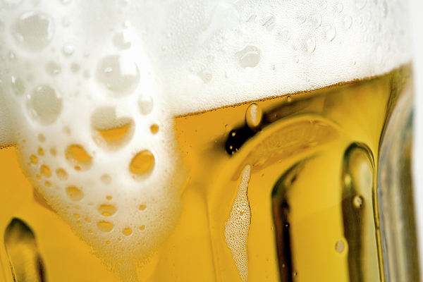 A Glass Of Beer Photograph