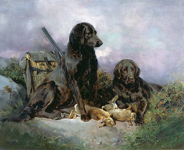 Black; Labrador; Shotgun; Rabbit Painting - After The Shoot by William Woodhouse