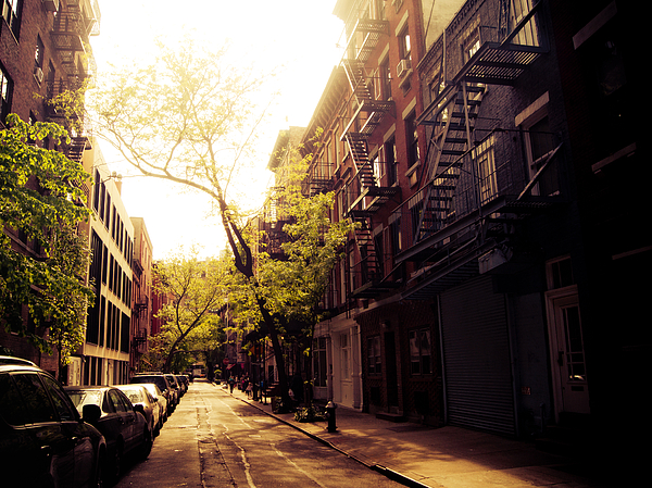 Beautiful Photograph - Afternoon Sunlight On A New York City Street by Vivienne Gucwa