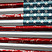 Nature Photograph - American Flag by Billy Tucker