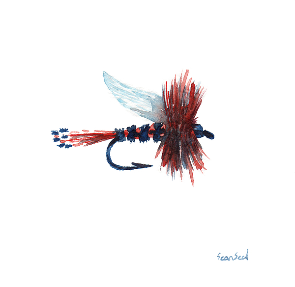 Fishing Painting - American Fly by Sean Seal