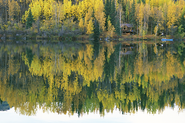 An Autumn View Of A Cabin Reflected Photograph