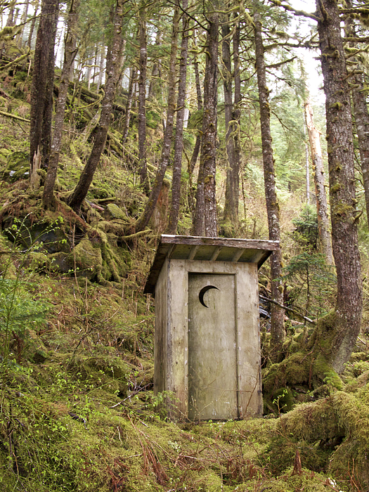Outdoors Photograph - An Outhouse In A Moss Covered Forest by Michael Melford