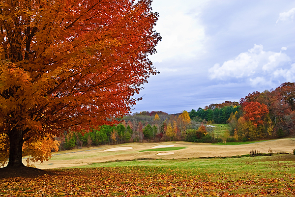 Autumn Photograph - Autumn On The Golf Course by Susan Leggett