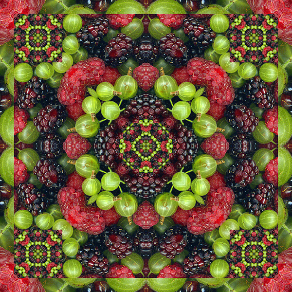 Yoga Art Photograph - Berry Good by Bell And Todd