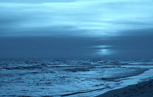 Blue Evening Photograph