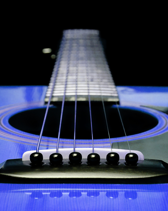 Andee Design Guitar Photograph - Blue Guitar 14 by Andee Design
