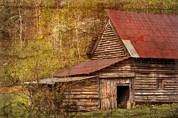 Fine Art Photograph - Blue Ridge Mountain Barn by Debra and Dave Vanderlaan
