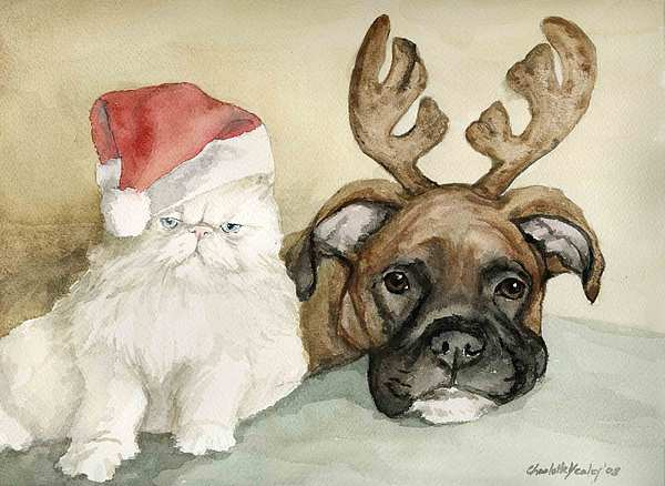 Dog Painting - Boxer And Persian Cat Christmas by Charlotte Yealey