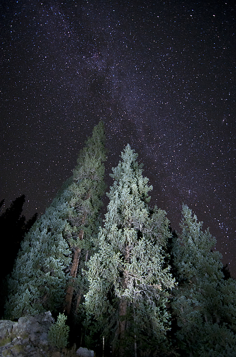 Milky Way Photograph - Bright Night by Jeff Kolker