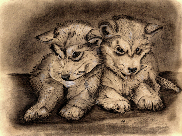 Puppies Drawing - Brotherly Love by Russ  Smith
