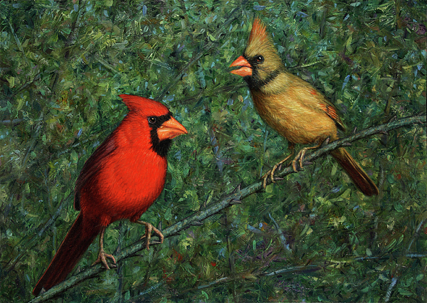 Cardinal Couple Painting