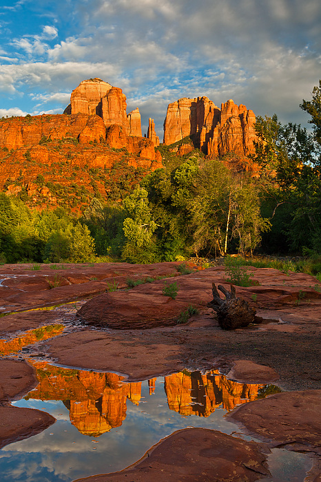 Landscape Photograph - Cathedral Rock Reflection by Guy Schmickle