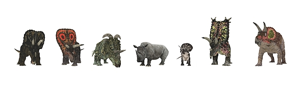 Cerapod Dinosaurs Compared To A Rhino Print by Walter Myers