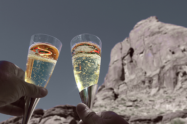 Champagne Photograph - Champagne Wish by Angie Wingerd