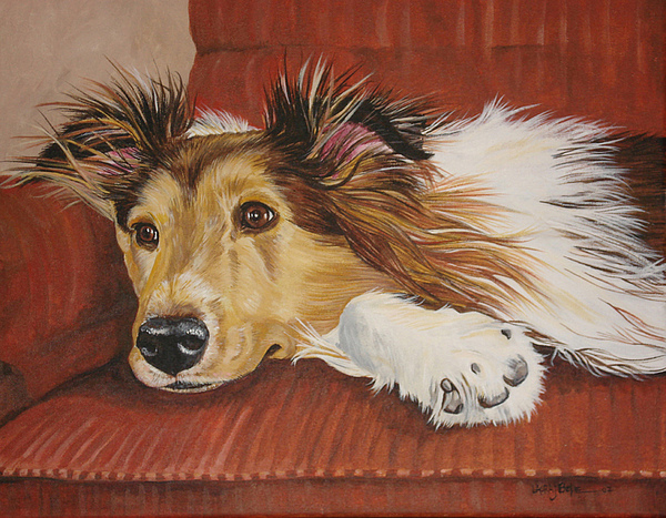 Dog Paintings Painting - Collie On A Couch by Laura Bolle