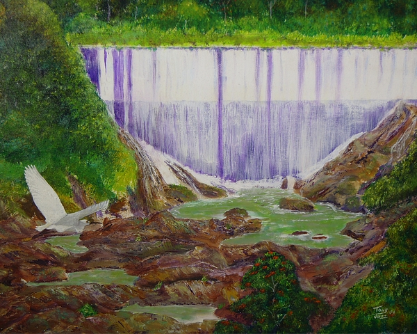 Snowy Egret Painting - Comerio Dam by Tony Rodriguez
