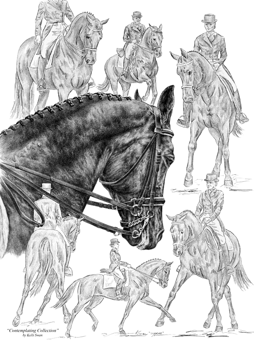 Dressage Drawing - Contemplating Collection - Dressage Horse Drawing by Kelli Swan